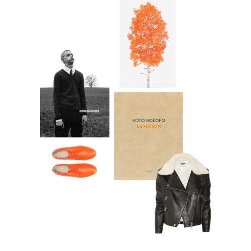 Iiiinspired+_+polyvore.com+_+angie+palmai+_+cbatelier+_+curated+by+atelier+moodboards+_+10